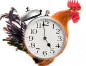 Những lợi ích bất ngờ của việc dậy sớm sẽ khiến bạn bỏ ngay thói quen ngủ nướng
