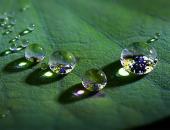Bí quyết vàng để có sự thanh tịnh trong tâm hồn