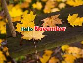 Tử vi tháng 11/2016 của 12 cung hoàng đạo