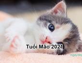 Tử vi 2021 của tuổi Mão