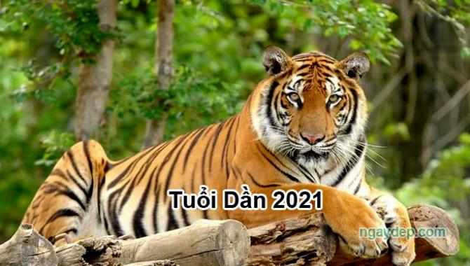 12 con giáp năm Tân Sửu- 2021
